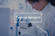Testing Services
